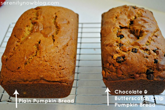 Chocolate and Butterscotch Chip Pumpkin Bread, Serenity Now blog