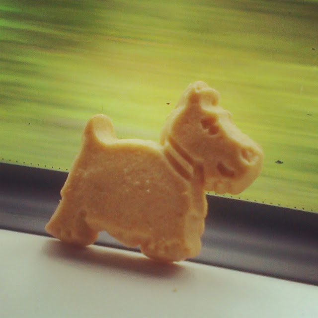 Scottie dog shortbread on the train