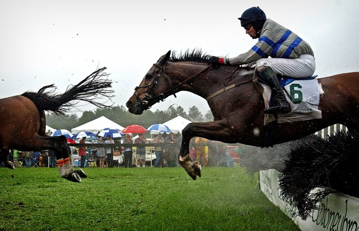 Shenandoah river blue riidge mountains and northern for Steeple chase