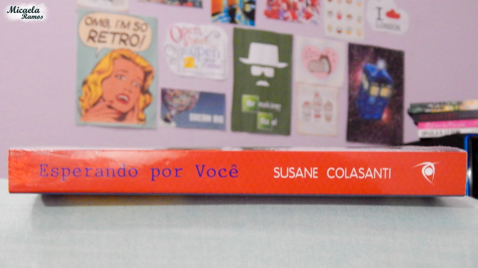 fotografia, photography, livro, book, susane colasanti, esperando por voce, waiting for you, micaela ramos, wanderlust,