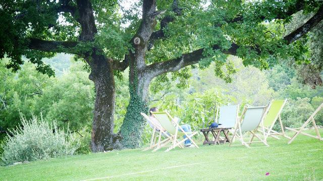 Bellone en Provence