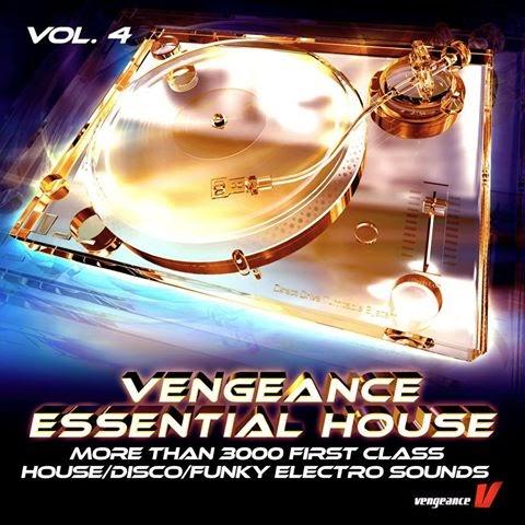 Vengeance essential house 4