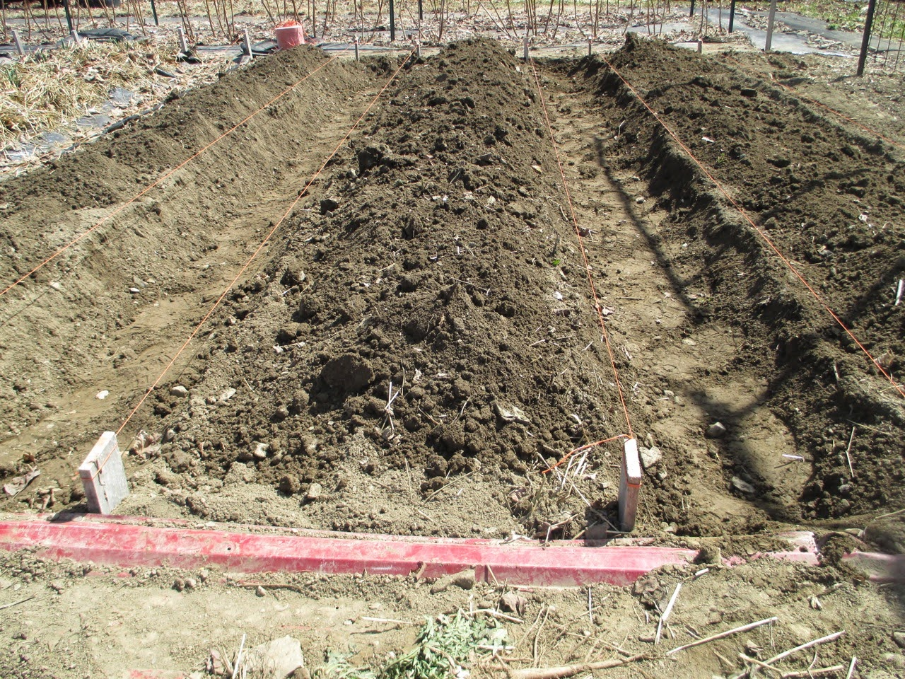 The Deliberate Agrarian: Step-By-StepRaised Garden Beds