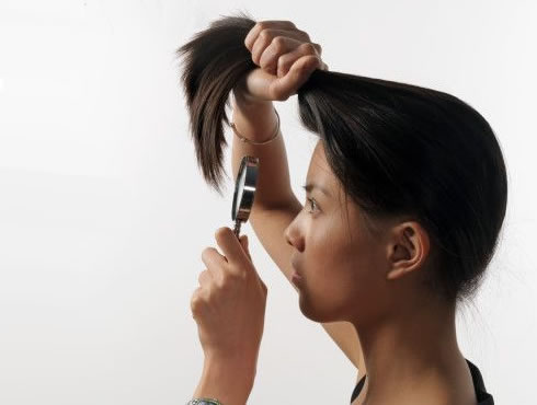 Le moyen national le traitement des bouts fouettés des cheveu
