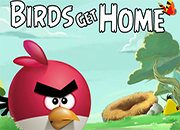 Angry Birds Get Home