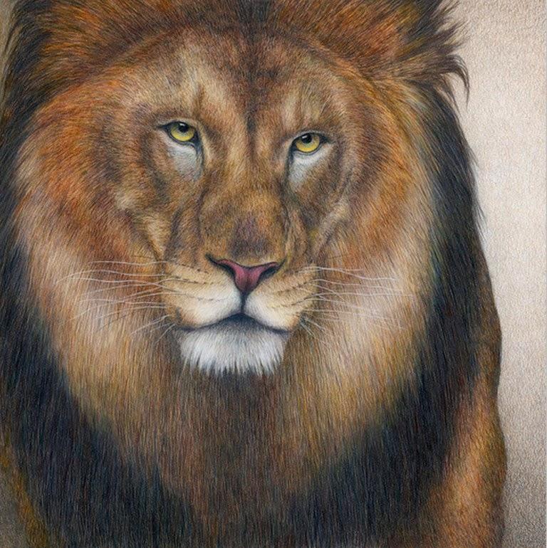 pinturas-con-diferentes-animales