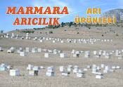 MARMARA ARICILIK