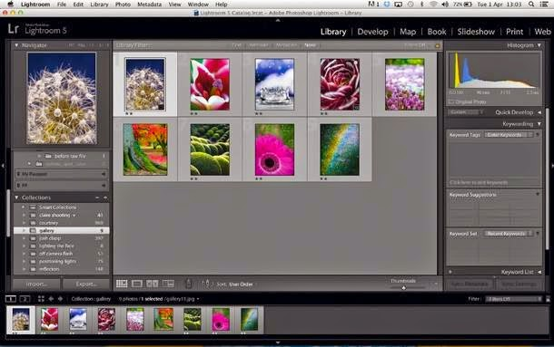 Download Adobe Photoshop Ligthroom 5.7 Terbaru