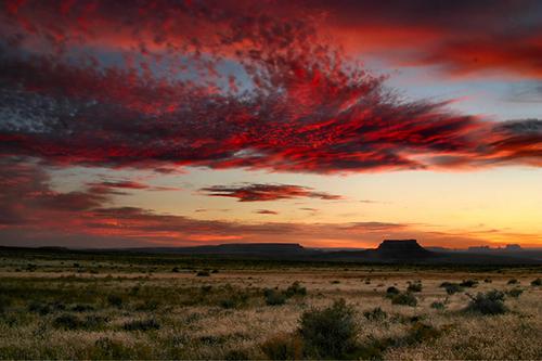 beautiful desert sunset scene