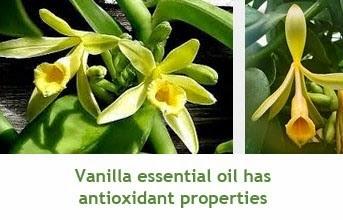 Vanilla essential oil health benefits