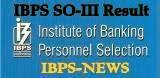 ibps so 2014 result