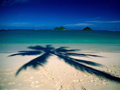 hawaii beach wallpaper. Hawaii Beach Wallpaper