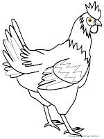 Mewarnai Gambar Sketsa Ayam Hitam Putih