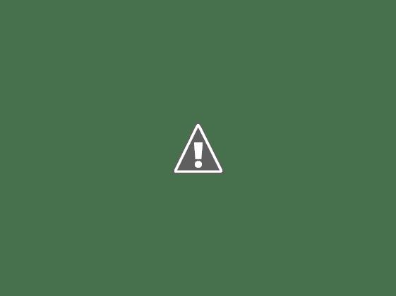 20110611_15.jpeg