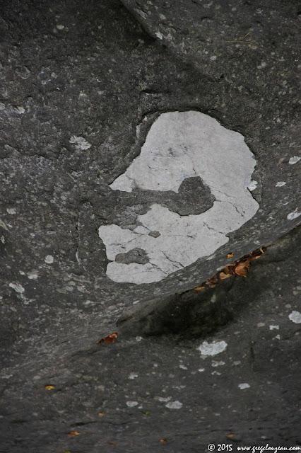 visage extra-terrestre, shooté à Isatis, Fontainebleau, (C) 2015 Greg Clouzeau