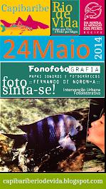 FOTOSINTA-SE Fonofotografia Noronha