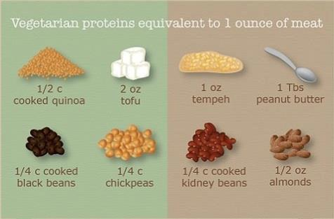 how to avoid animal protein