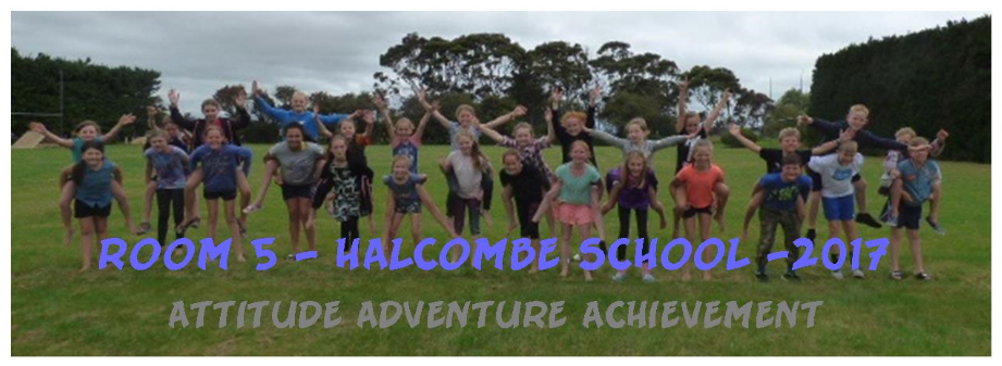 Room 5 Halcombe School 2017