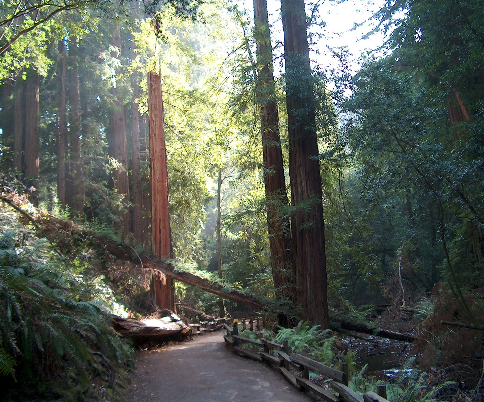 Sandra Scott 39 S Travel Columns Great Places To Visit In California