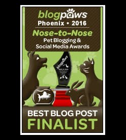 """Best Written Pet Blog Post"" 2016 Finalist in the BlogPaws Nose to Nose Awards"
