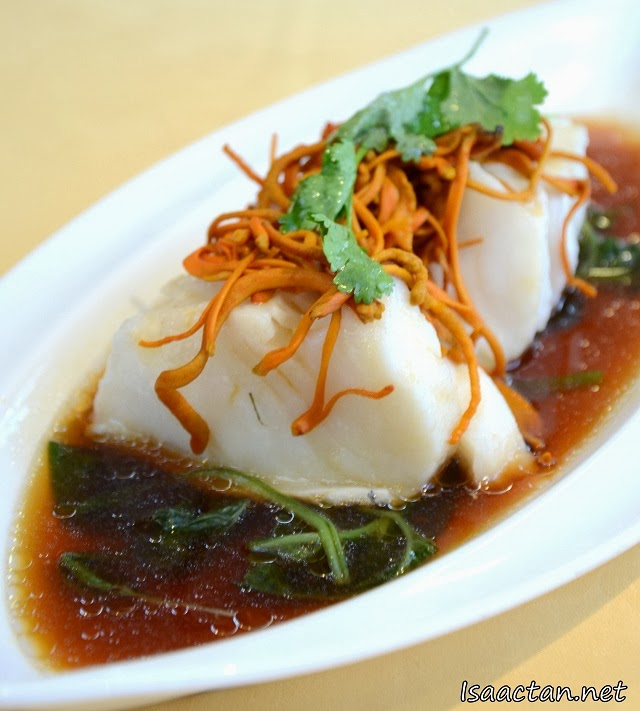 Steamed Fillet of Canadian Cod Fish with Chinese 'Chong Chao Hua' Herb