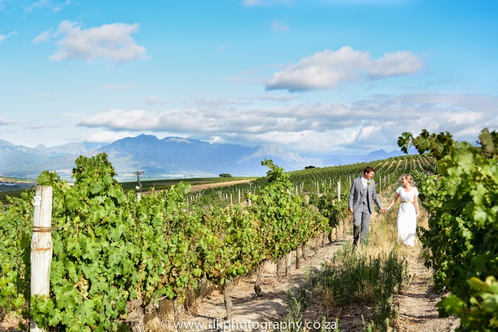 DK Photography DSC_5455 Susan & Gerald's Wedding in Jordan Wine Estate, Stellenbosch  Cape Town Wedding photographer