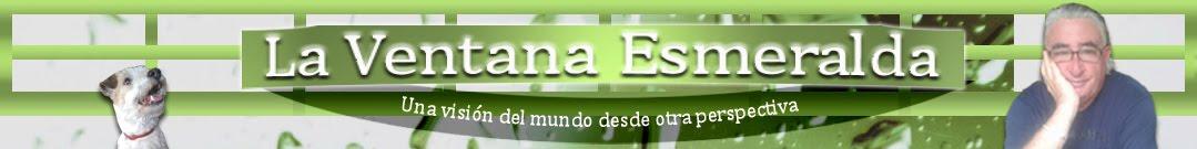 La Ventana Esmeralda - Activismo