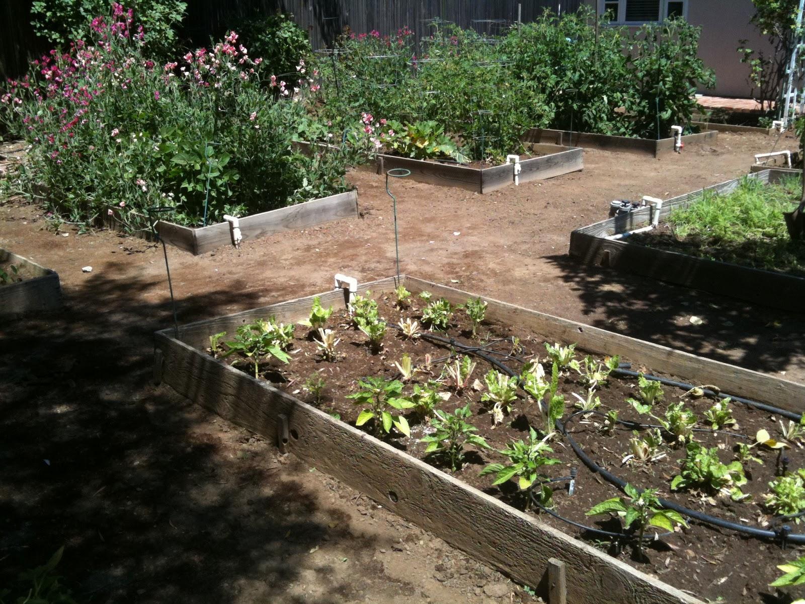I love my garden - Knitionary