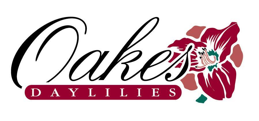 Oakes Daylilies - Freshly-dug daylilies