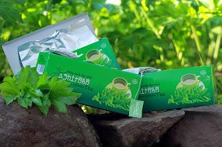 Ashitaba sangat berguna dalam mengobati kram menstruasi dan nyeri, efek ashitaba juga sangat baik dalam memberikan efek lebih nyaman setelah empat sampai enam tahun menopause dan menyediakan wanita alternatif terapi untuk terapi hormon pengganti dan histerektomi.