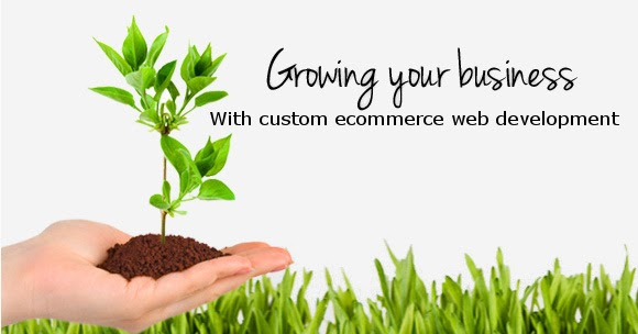 Custom Ecommerce Development for Business Growth | By ...