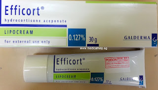 Efficort