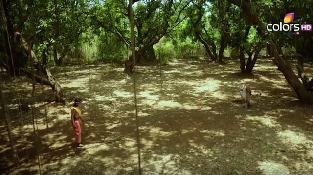 Sinopsis Ashoka Samrat Episode 74