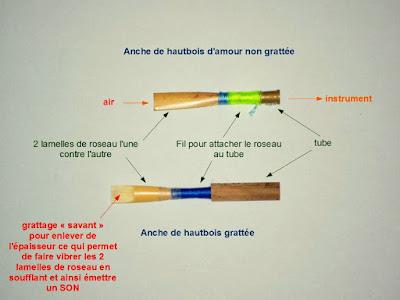 http://blog.hautboisperplexes.com/2014/01/tout-petit-abrege-sur-les-anches-doubles.html