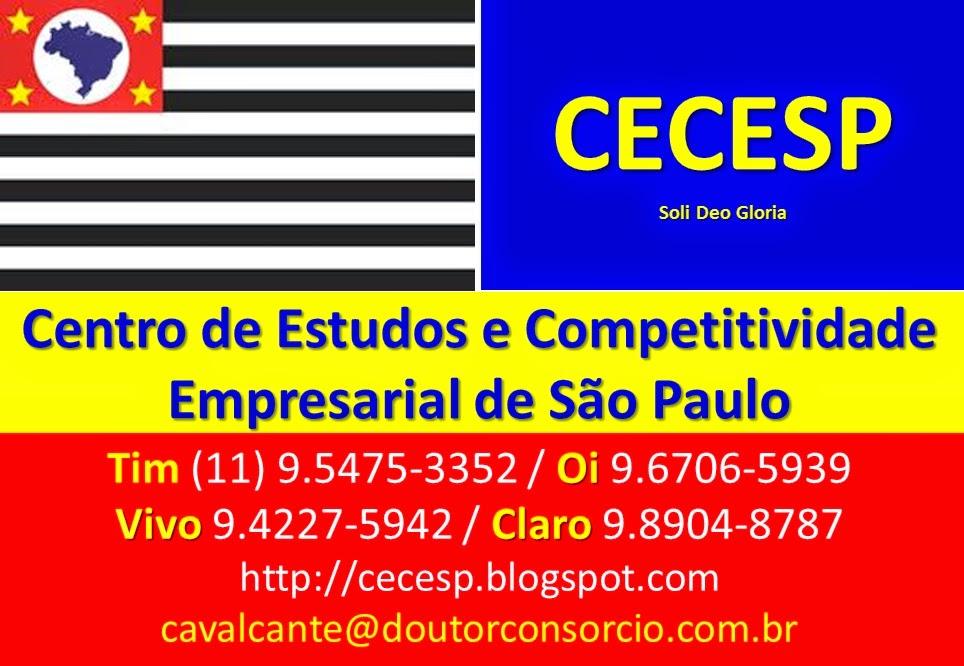 CENTRO DE ESTUDOS E COMPETITIVIDADE EMPRESARIAL DE SÃO PAULO