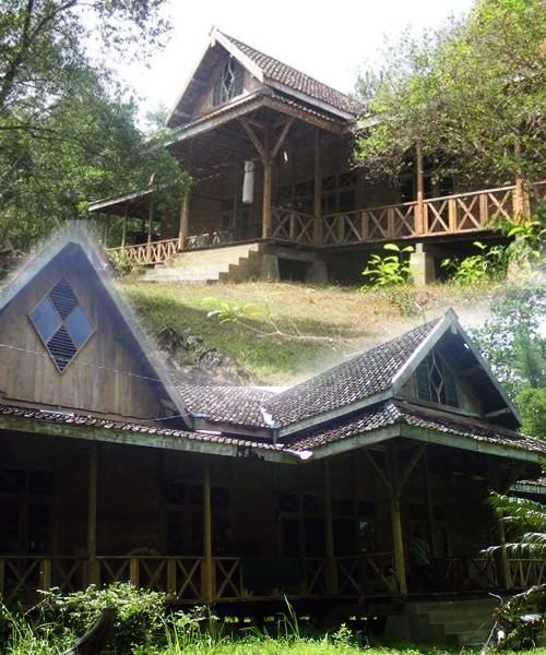 Museum Kayu Milik UGM