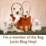 Bag Blog Hop