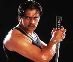 Arjun Builds Sensitive Movie Jai Hind 2