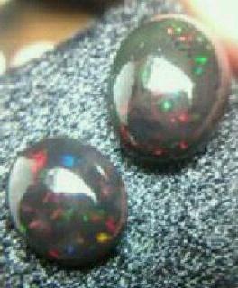 waktu penjemuran tepat black opal