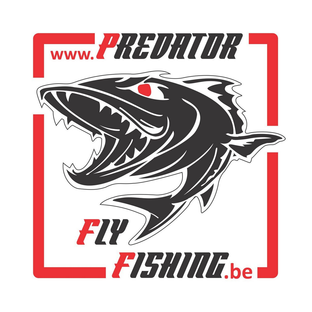 Predator Fly Fishing