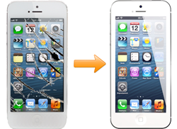 iphone 5/5c/5s repair