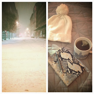 snow in New York City NYC, Hercules Northeastern storm in NEW yORK, cold weather accessories in New York, snow accessories, must haves for snow, Starbucks New York mug, Gap beanie, off white beanie, cute girls beanie for winter, Graphic Image notebook planner, snakeskin monogrammed planner, Graphic Image snakeskin planner