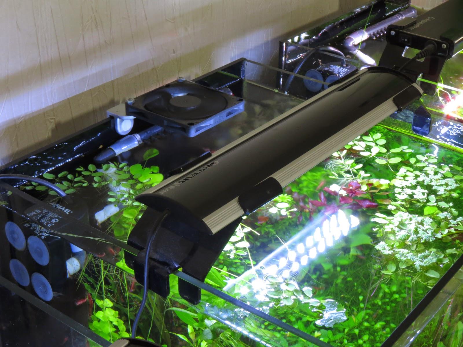 Охлаждение воды аквариума кулерами