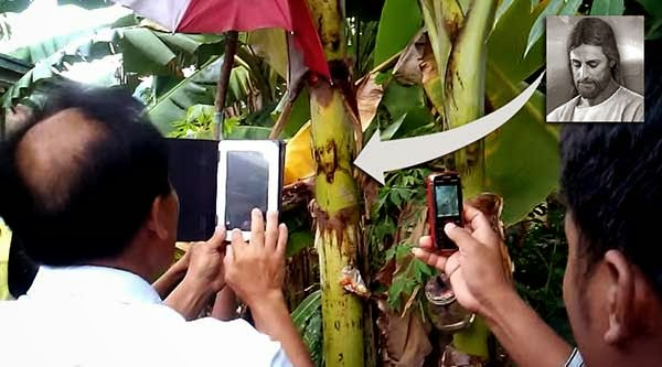 'Image of Crying Jesus' Appears on Banana Trunk