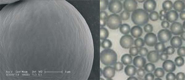 Ellanse (polycaprolactone, PCL) 聚酯晶球具有不同的時效