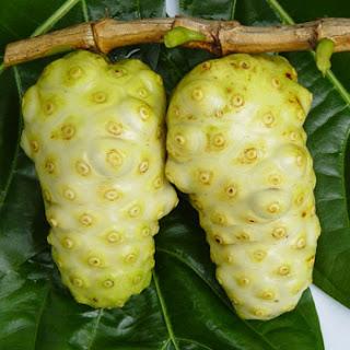 Caution about Noni fruit