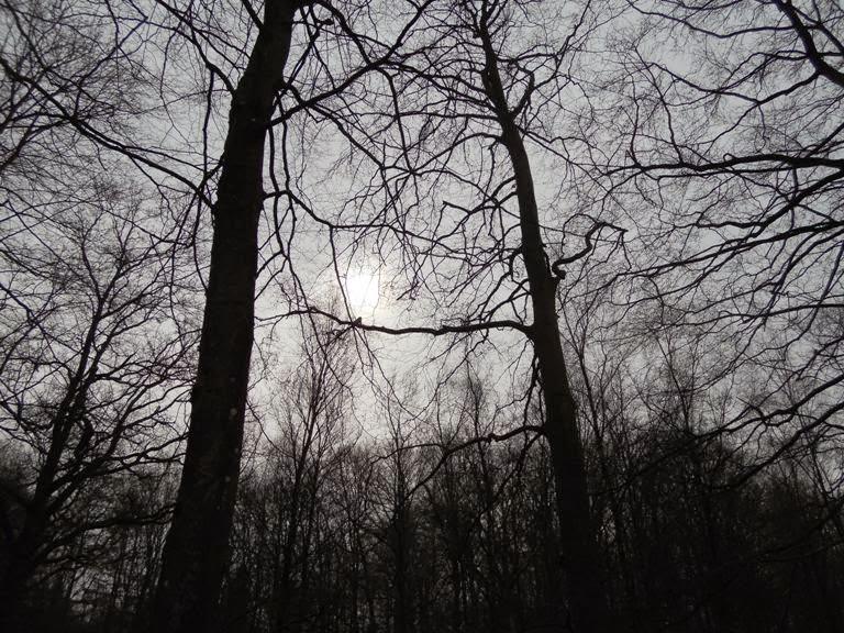 Eclissi solare, sud della Svezia 20 marzo 2015
