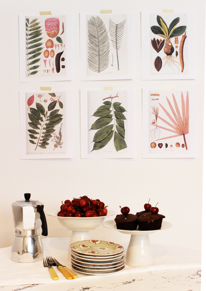 Wall Art Prints Download : Free download botanical prints poppytalk