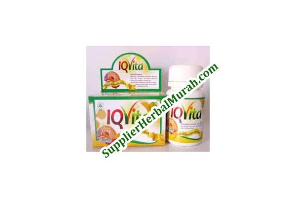 IQvita (Nutrisi Kecerdasan Otak)