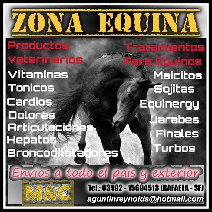 ZONA EQUINA - 01/06/15